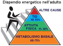 dispendio-energetico