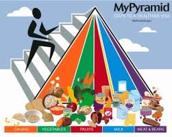 pyramid alimentare